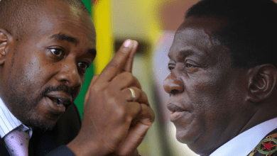 Photo of 'Release political prisoners before dialogue' Chamisa says