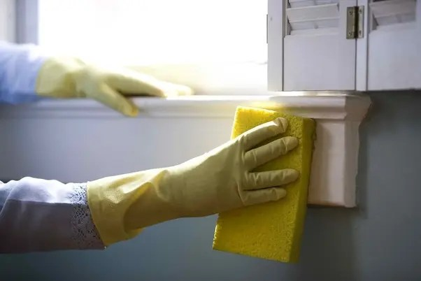 PART-TIME DOMESTIC CLEANERS
