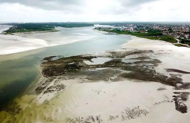 Amazon Beaches