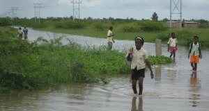 Mozambique cancels flights