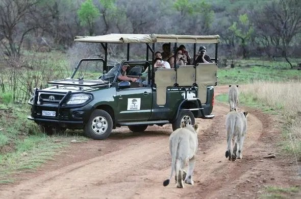 game reserves close to Johannesburg