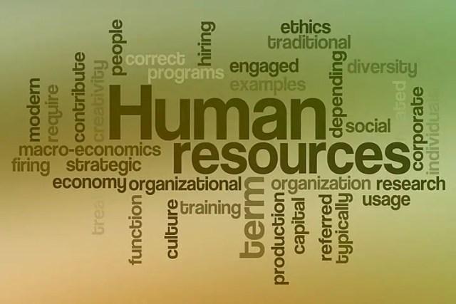 Human Resource Administrator