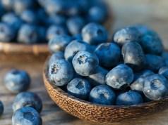 Eating Blueberries