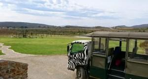 safari travellers,
