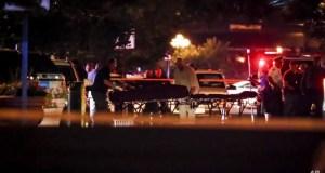 US shootings leave 29 dead