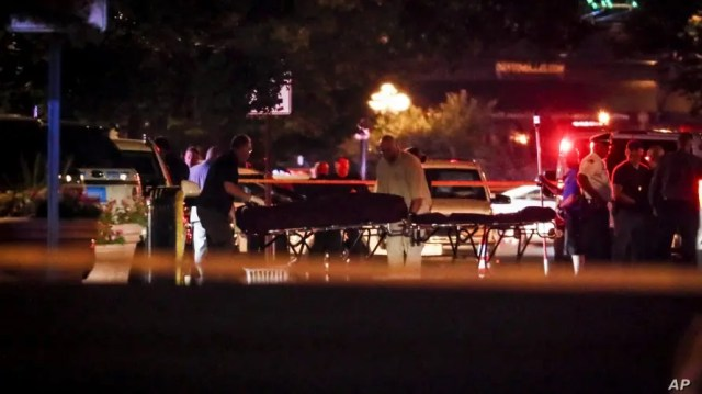 US shootings leave 29 dead