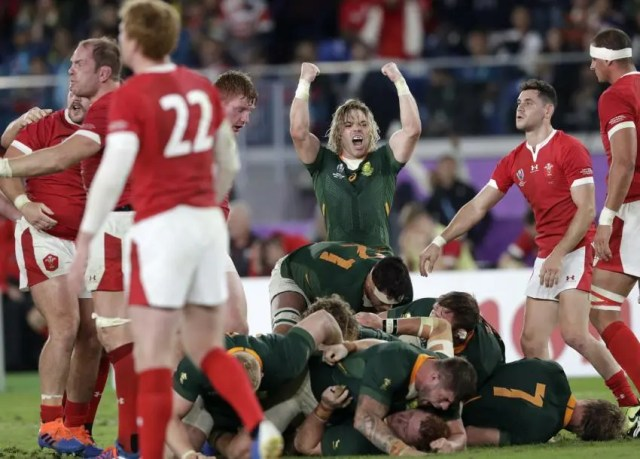 South Africa 19 - Wales 16