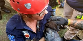 paramedic saves puppy