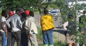 Zimbabwean nationals