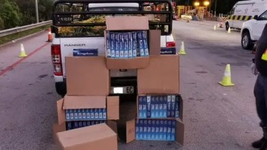 eight boxes filled with 50 cartons of cigarettes