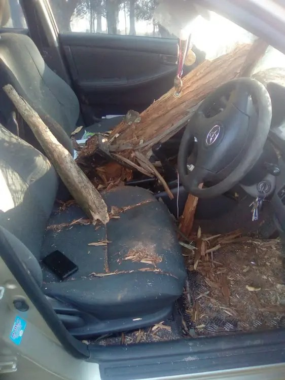 KZN driver lucky to be alive after falling branch almost impales him
