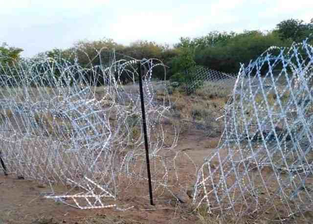 Beitbridge border fence