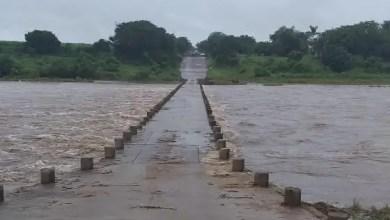 Kruger National Park road
