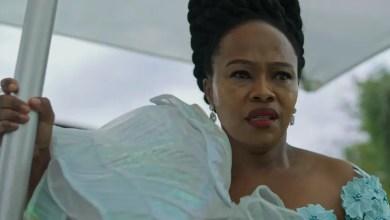 Lindiwe Dlamini Dikana Sindi Dlathu