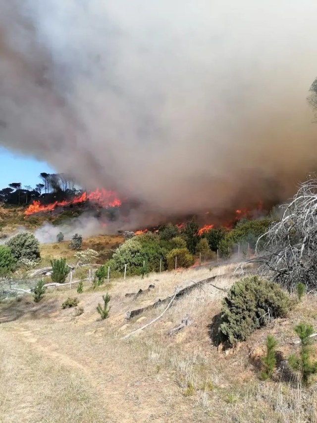 Hikers urgently evacuated after Rhodes Memorial restaurant fire