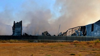 Concerns over chemicals from torched Durban plant as they threaten health & wildlife