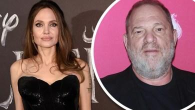 Harvey Weinstein blasts Angelina Jolie