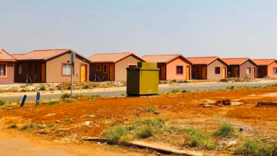 Some of the RDP houses that have been built in Alliance Extension One