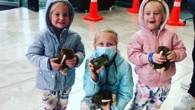 SA mother accused of killing three kids