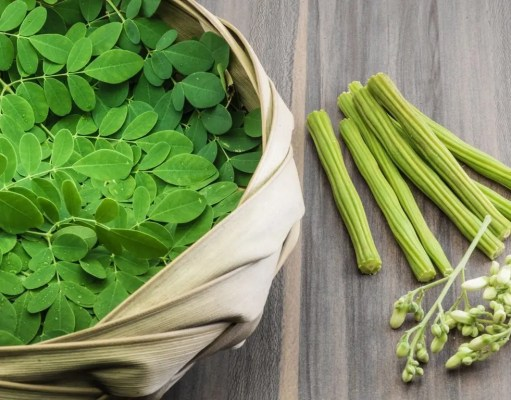 The amazing health benefits of Moringa