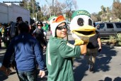 A true Oregon Duck...Photo by Dennis J. Freeman/News4usonline.com
