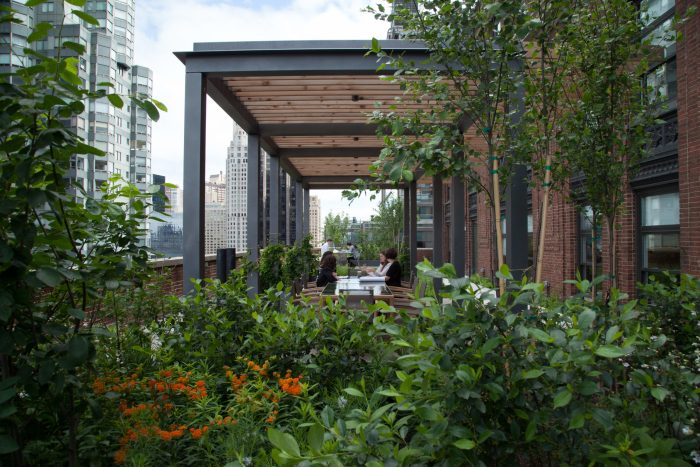 Bringing the outside into the office: Covid-19 bolsters green design