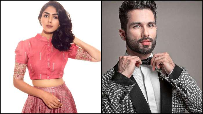 DNA Exclusive – Shahid Kapoor for me is like a learning, appreciate universe for making it happen: Mrunal Thakur