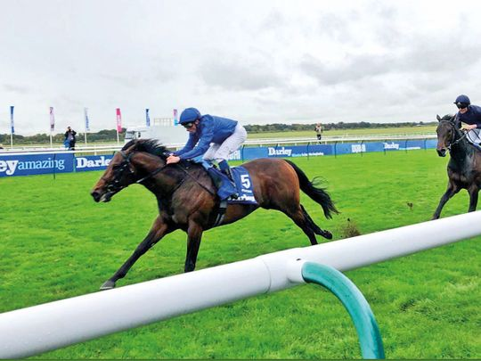 Horse racing: Godolphin star Pinatubo retired to stud early