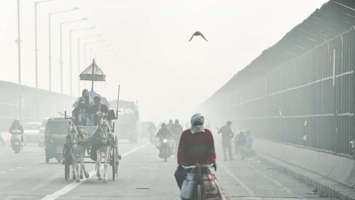 Cold wave grips North India, at 4.1 degrees Delhi witnessed season's lowest temperature