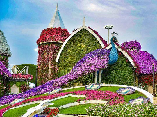 Photos: Gulf News readers share pictures of beautiful places to visit in Abu Dhabi, Dubai, Sharjah, Fujairah, and Ras Al Khaimah