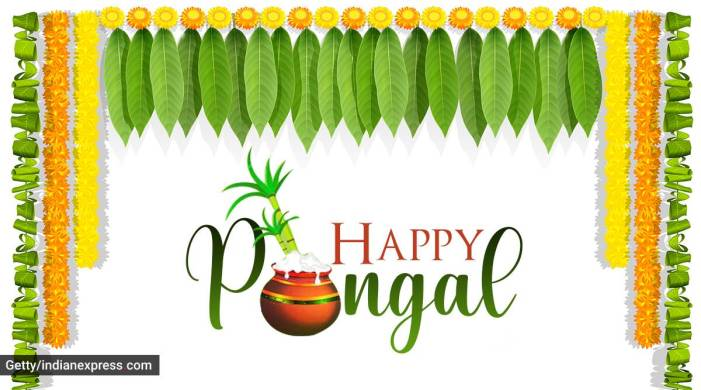 Happy Pongal 2021: Wishes Images, Status, Quotes, Messages, and Photos