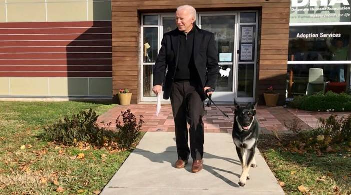 Special 'indogeration' event to be held for Joe Biden's rescue dog Major later this month