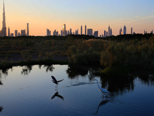 From February 18, sunset in UAE will precisely pinpoint direction of the Qibla