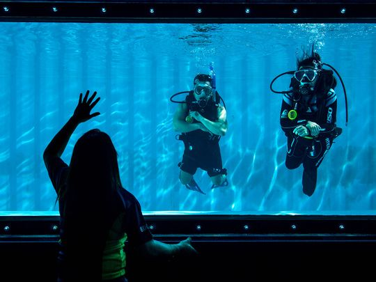 Look: Diving pool from shipping containers at Dubai's Dive Garage in Al Quoz