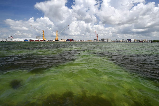 Florida crews are pumping wastewater into Tampa Bay to avoid a full reservoir breach: What we know
