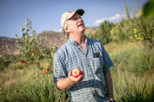 The Montezuma Orchard Restoration Project preserves history of apples for the future