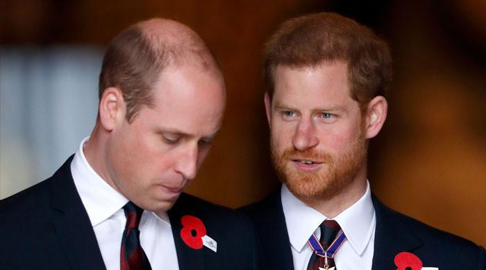 Prince Harry, William slammed for having Biblical 'Cain and Abel' relationship