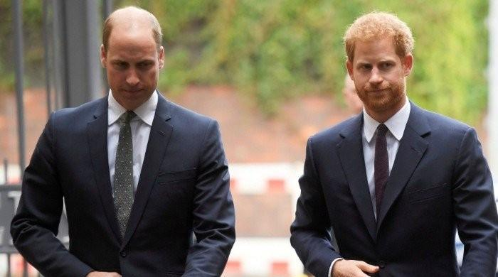 Princes William and Harry 'keen to spend time together' and put feud to rest