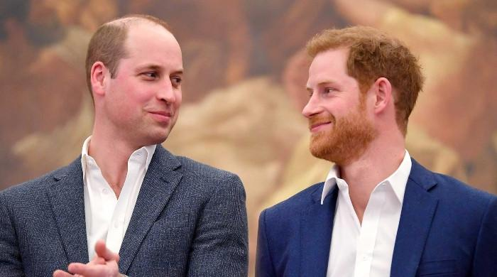 Princes William and Harry take steps to mend broken ties: 'Grief has united them'