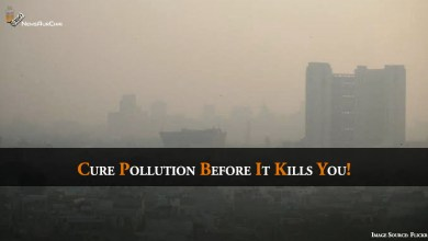 Photo of Cure Pollution Before It Kills You!