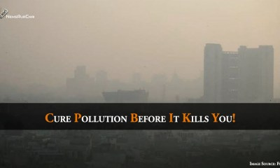 Cure Pollution Before It Kills You!