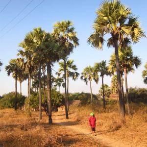 Burma em Bagan