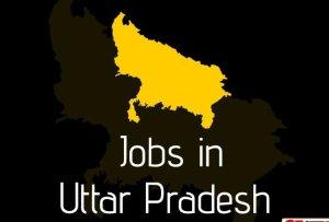 uppcl technician recruitment 2020 1592470642