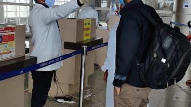Migrants arrive by flights