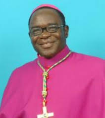Pope appoints Bishop Kukah member of council for promotion of human devpt