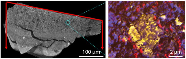 The Chemistry of Art: Scientists Explore Aged Paint in Microscopic Detail to Inform Preservation Efforts