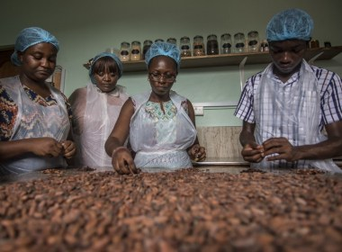 Cocoa marketers accept Ghana, Ivory Coast price   News Central TV