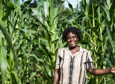 Tanzanian Injects Tzs15billion to Strengthen Food Security (News Central TV)