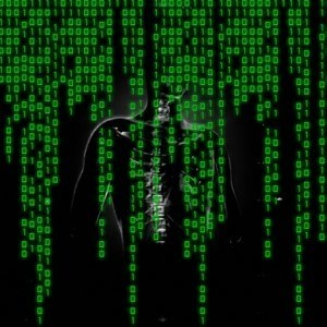 The Matrix - Public Domain