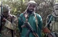 Boko Haram kills five, abducts 30 women in Adamawa village